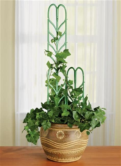 Plant Support For Indoor Or Outdoor Climbing Plants, Plant