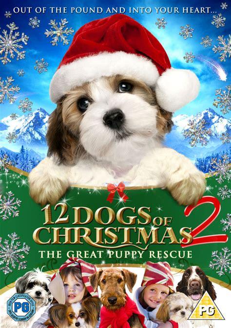 dogs  christmas  great puppy race dvd zavvi uk