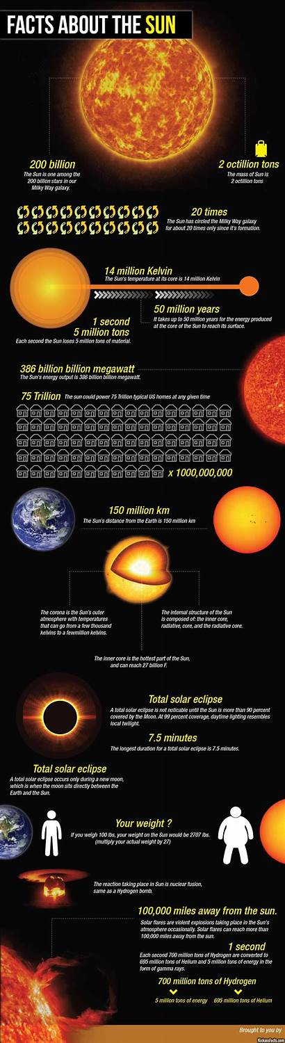 Facts Sun Infographic Interesting Space Infographics Universe