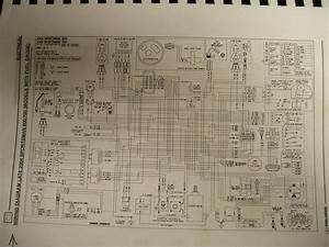 2004 Polaris Sportsman 600 Wiring Diagram