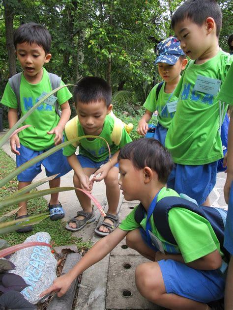 ymca education services ymca  singapore