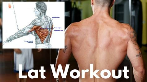 1 Little-Known Exercise for Bigger Lats - YouTube | Fun ...