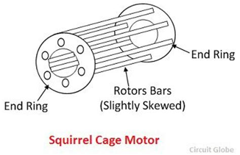 difference  slip ring squirrel cage induction motor  comparison chart circuit globe