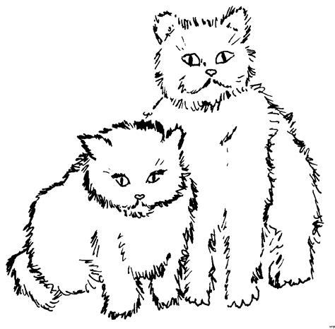 zwei suesse katzen ausmalbild malvorlage katzen