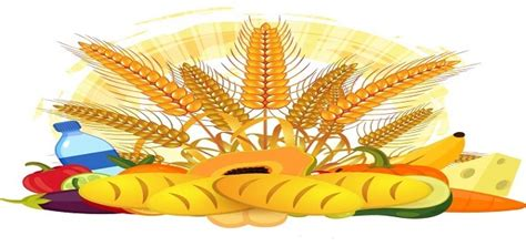 Italian Gluten Free Food Market Growth Rate, Size, Shares ...
