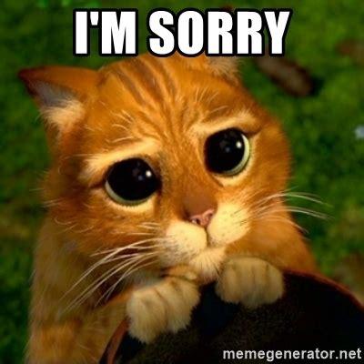 Sorry Meme - pics for gt sorry cat shrek