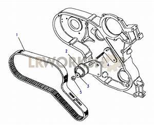 Timing Belt  U0026 Tensioner - 2 5 Td