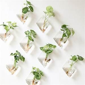 Aliexpress com : Buy 2pcs Glass Hanging Wall Vase Flower