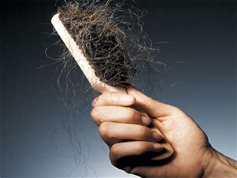 excessive hair shedding after pregnancy black hair shedding in strands