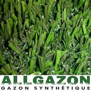 Gazon Synthétique Prix : pour ma famille prix gazon synthetique foot indoor ~ Farleysfitness.com Idées de Décoration