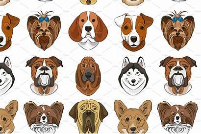 Different Dogs Breed Creativemarket Patterns Netkoff Pattern
