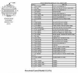 Wiring Database 2020  27 2004 Jeep Liberty Wiring Diagram