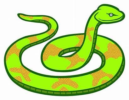 Snake Clipart Vector Clip Python Graphics 1995
