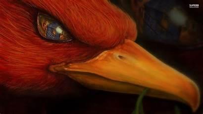 Phoenix Bird Fantasy Wallpapers Desktop Fire Eye