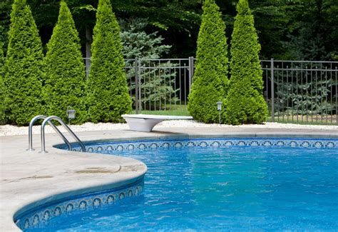 swimming pools cold pool climates evergreen climate