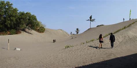 sbmptn geografi erosi tanah  parangtritis