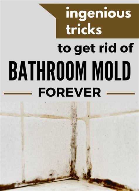 ingenious tricks   rid  bathroom mold
