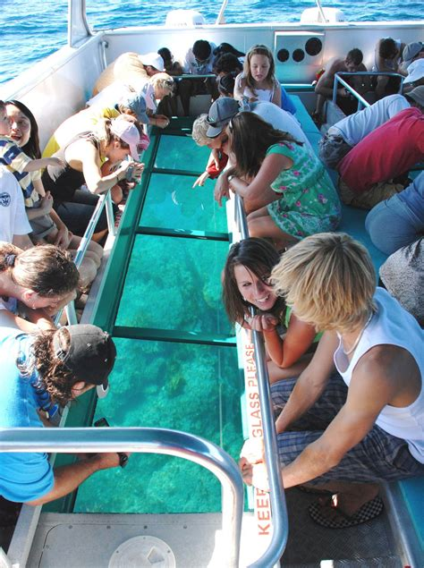Glass Bottom Boat Tours Leigh by Goat Island Nz Glass Bottom Boat Tour Leigh Aucklandnz