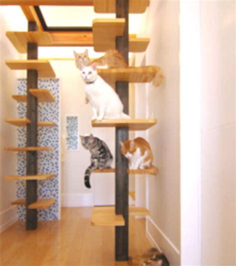 photo un arbre 224 chat constitue le coeur de la maison pens 233 e par le groupe fauna plus design