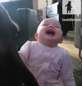 Hysterical Laughing Meme - hysterical laughing baby will make your day cyber gazing