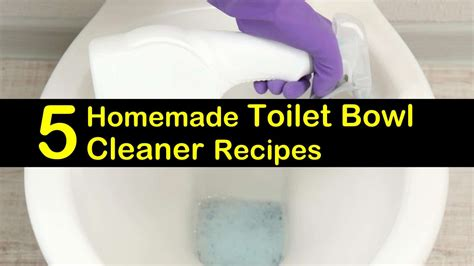 5 Excellent Homemade Toilet Bowl Cleaner Recipes
