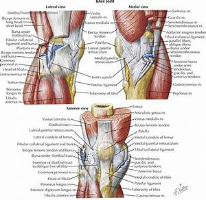 Multiple Aspects Of The Knee