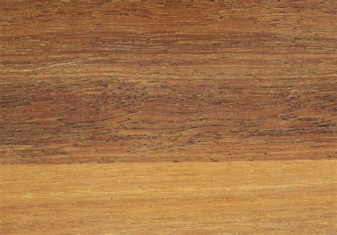 Spotted gum   Forest Products Commission