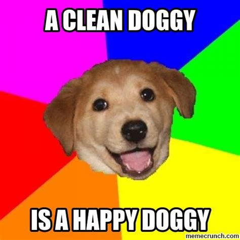 Advice Dog Meme - the klip joint dog grooming motto