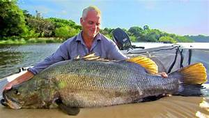 Catching A Nile Perch - River Monsters - YouTube