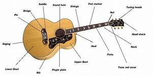 Guitarmake  More Anatomy And Construction Overview