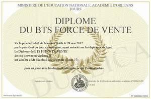Bts Force De Vente : diplome du bts force de vente ~ Medecine-chirurgie-esthetiques.com Avis de Voitures