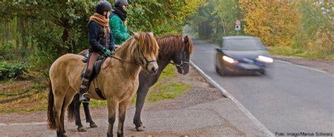 fotos pferden pferde im stra 223 enverkehr adac
