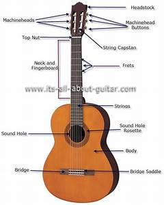 Diagram Of A Nylon String Guitar