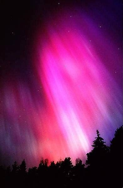 1000 images about northern lights on pinterest trips back to and nordic lights