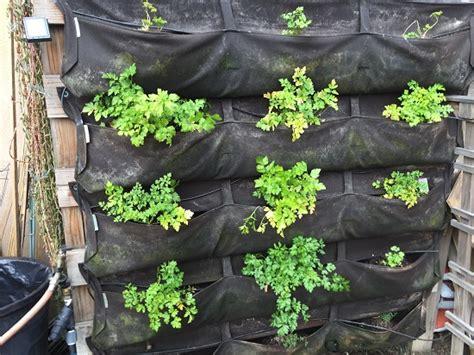 Vertical Gardening-organic Gardening-mother