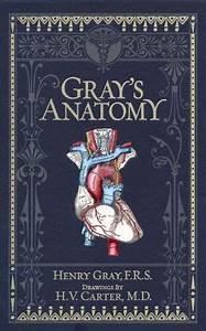 Gray's Anatomy (Barnes & Noble Omnibus Leatherbound ...