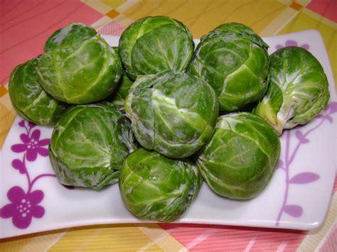 cucinare broccoletti di bruxelles ricette con cavolini di bruxelles