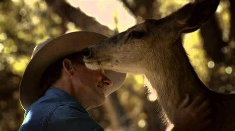 Wild Deer Bonds With Human