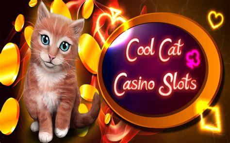 A Cool Cats Casino Online Premium Slot