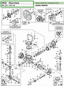 Comet Pump Parts Diagram