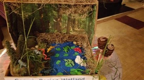 wetlands diorama diorama pinterest school
