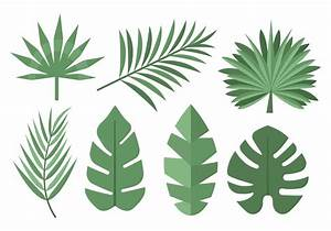 Free Tropical Palm Leaves Vector - Download Free Vector ...