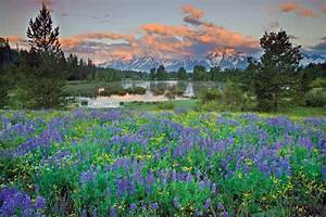 Rv Travel Planner 3 Day Grand Teton Expedition Day 1 My Yellowstone Park