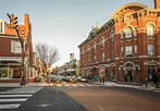 Businesses in Doylestown, PA