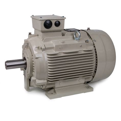 Induction Electric Motor by Electric Motor 3 Phase Induction Motor Manufacturer From