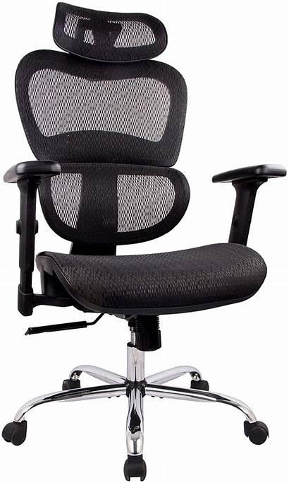 Ergonomic Chair Office Mesh Chairs Working Desk