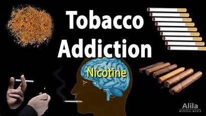 Nicotine Tobacco Addiction Factors