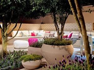 Bäume In Kübeln : solit rpflanzen raffinierte akzente im garten und auf ~ Lizthompson.info Haus und Dekorationen