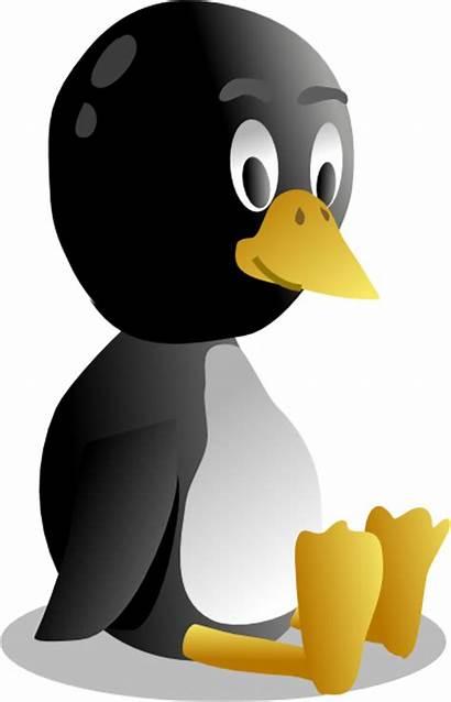 Sitting Pinguin Tux Penguin Clip Vector Svg