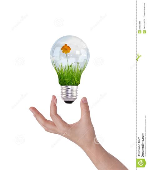 light bulb with beautiful flower inside